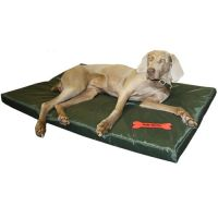 Waterproof Dog Bed 2 Sizes Large Washable Cover Pet Cat ...