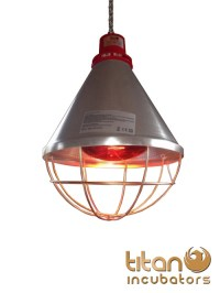 Heat Lamp Poultry, Puppies, Dog, Kittens, Piglets Animals ...