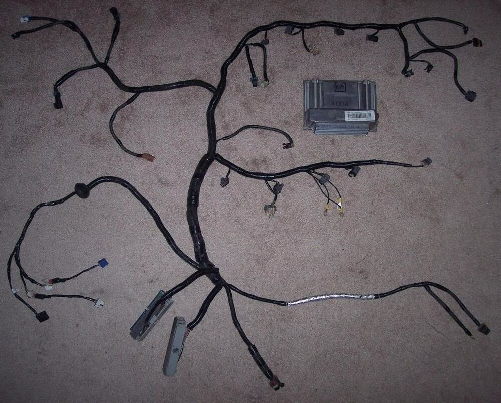lt1 swap wiring diagram house insulation standalone harness rewire and pcm tune included ls1 lsx 4.8 5.3l 5.7 6.0l | ebay