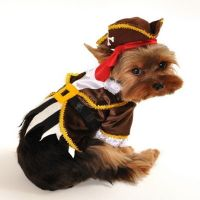 Pirate Captain Dog Costume by Anit Accessories ~ Size ...