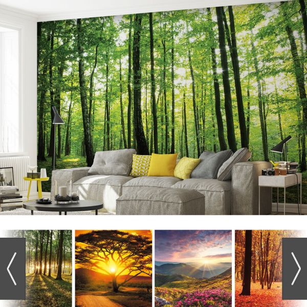 Forest Wall Mural Nature