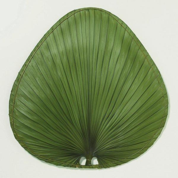 Green Palm Leaf Fan Blades Replacement