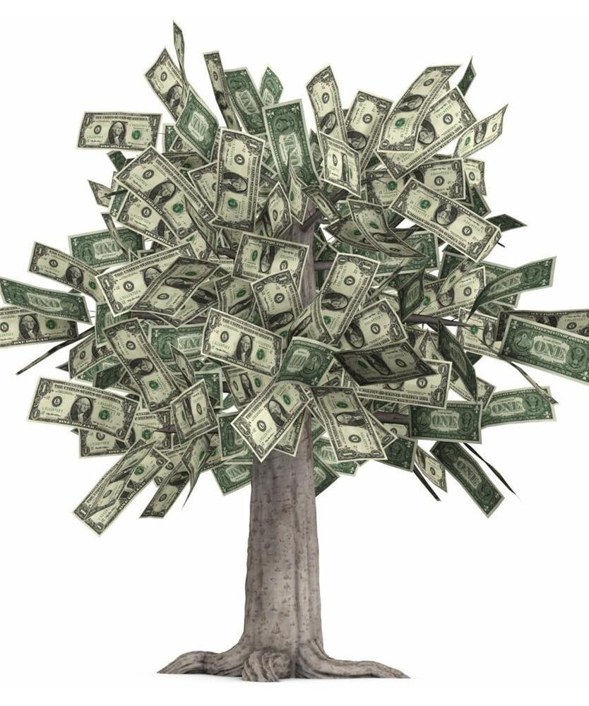 MONEY TREE GLOSSY POSTER PICTURE PHOTO grows dollars bills currency cash 1560  eBay