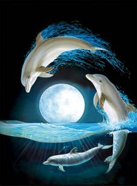 Dolphin Moon Lenticular 3D Picture Animal Poster Painting ...