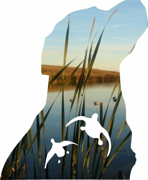 Dog And Duck Hunting Decal
