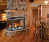 Napoleon BGD40N3 Direct Vent Natural Gas Fireplace Insert ...