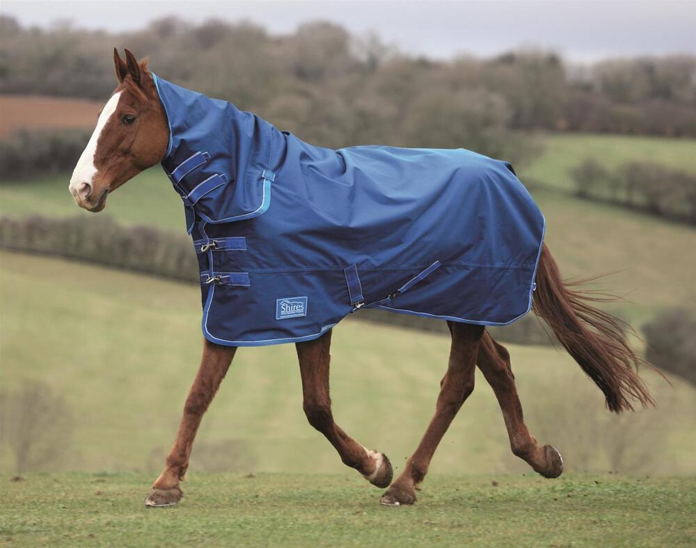 Shires Tempest Lite Combo Summer Horse Turnout Rug