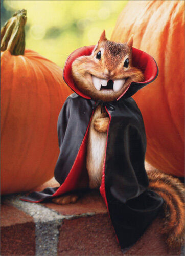 Chipmunk Vampire Stand Out Pop Up Funny Halloween Card