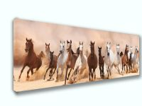 Horse Mix Panoramic Picture Canvas Print Home Decor Wall ...