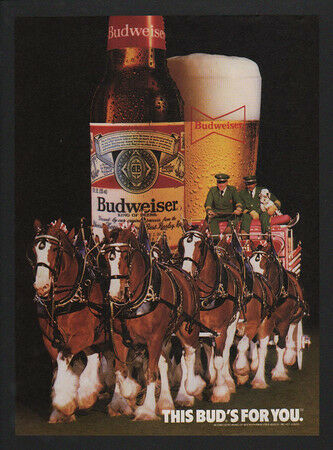1985 BUDWEISER Beer CLYDESDALE Horses DALMATIAN Dog