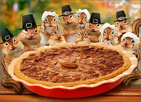 Chipmunks Deliver Pie Funny Thanksgiving Card Greeting