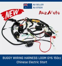 buggy wiring harness loom gy6 150cc chinese electric start 150cc go kart wiring diagram coolster go kart wiring [ 1000 x 1000 Pixel ]