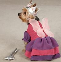 Zack & Zoey Fairy Princess Dog Halloween Costume XS