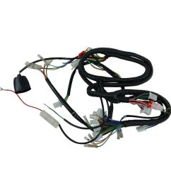 chinese gy6 150cc wire harness wiring assembly scooter moped sunl sunl go kart wiring harness [ 1000 x 1000 Pixel ]