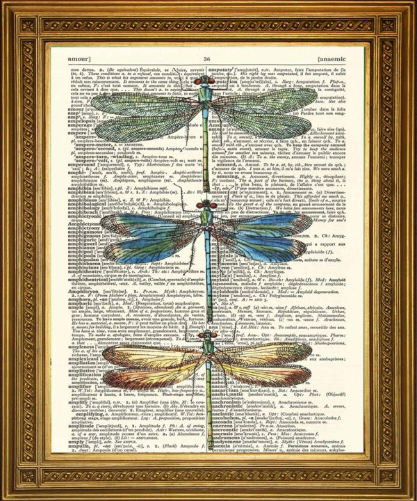Dragonfly Art Vintage Dictionary Print Winged Insects