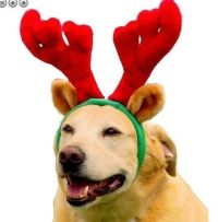 Holiday Christmas Antlers Costume for Dog Puppy Antler Hat ...
