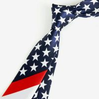 USA flag pattern tie,American flag print tie,US national ...