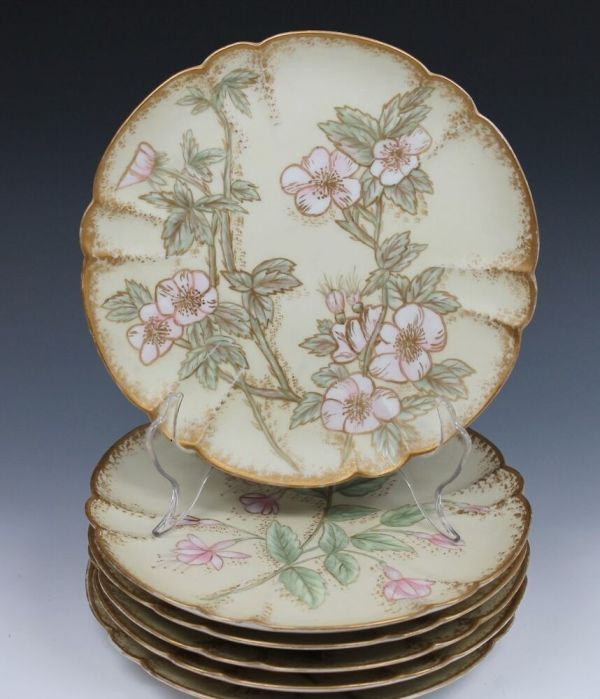 6 - Limoges Satin Finish Hand Painted Plate Plates