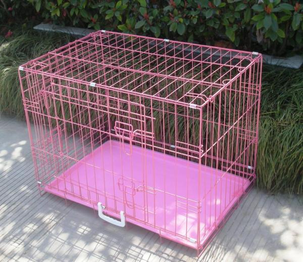 Pink Dog Crates Cages