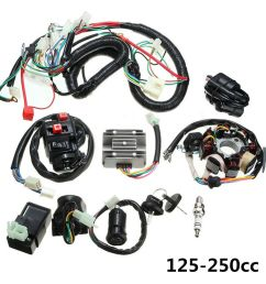 125 250cc motorcycle stator cdi coil electric wiring harness loom assembly kit 7246460735578 ebay [ 1000 x 1000 Pixel ]