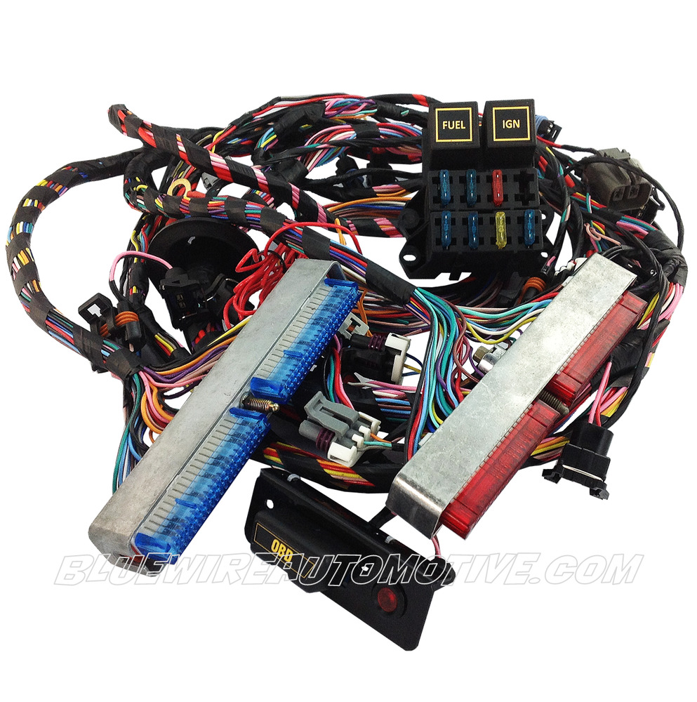 medium resolution of details about ls1 standalone engine wiring harness dbc auto trans hot rod commodore chev