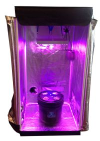 4 Site DWC Hydroponic System Grow Room - Complete Grow ...