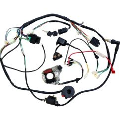 details about full electrics wiring harness cdi coil 110cc 125cc atv quad bike buggy td [ 1000 x 1000 Pixel ]
