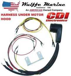 details about internal engine wire harness for mercury outboard 20 140 hp cdi 414 5532 34229 [ 1000 x 1000 Pixel ]