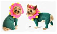 Flower Costume for Dogs - Cute Pink and Green Floral Dog ...