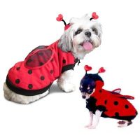High Quality Dog Costume LADYBUG COSTUMES Dress Your Dogs ...