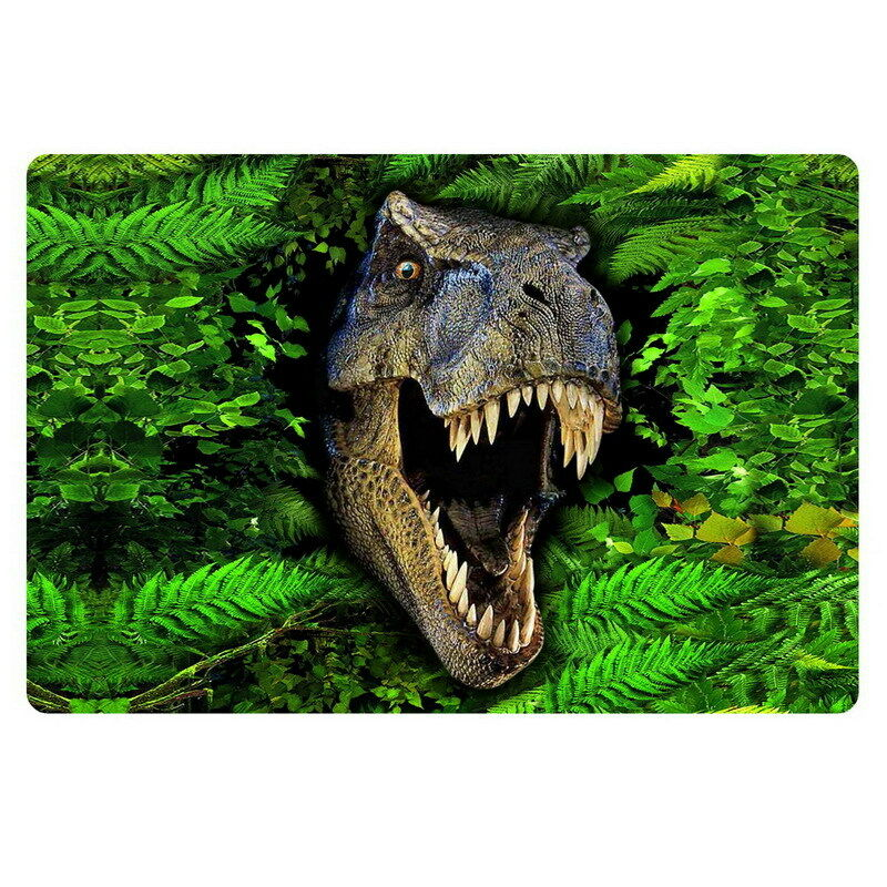 decorative kitchen floor mats ceiling lights lowes cool dinosaur doormat novelty rugs bathroom non-slip ...