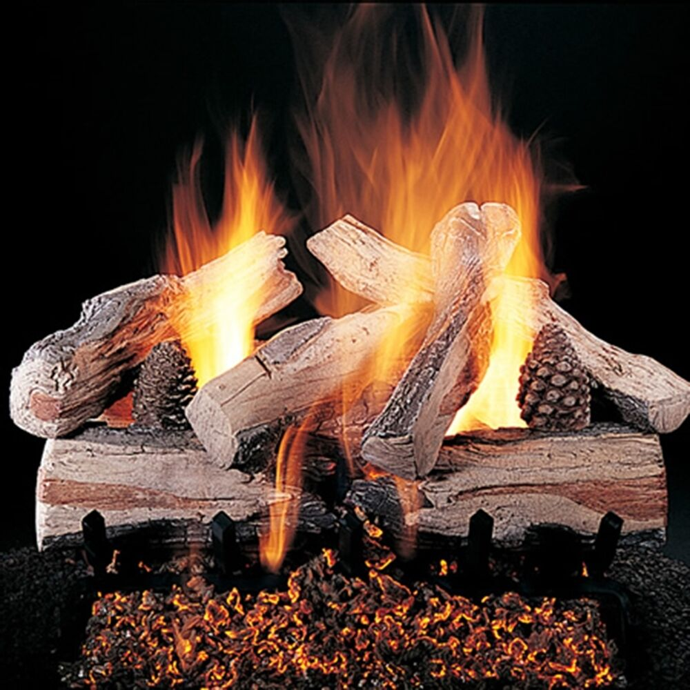 Evening Cross Fire Gas Logs 20 24 30 Natural Gas or Propane Optional Remote  eBay