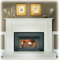 Napoleon GI3600 Gas Fireplace Insert - Natural Gas or ...