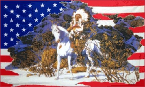 339x539 AMERICAN INDIAN HORSE SNOW FLAG USA NATIVE CHIEF
