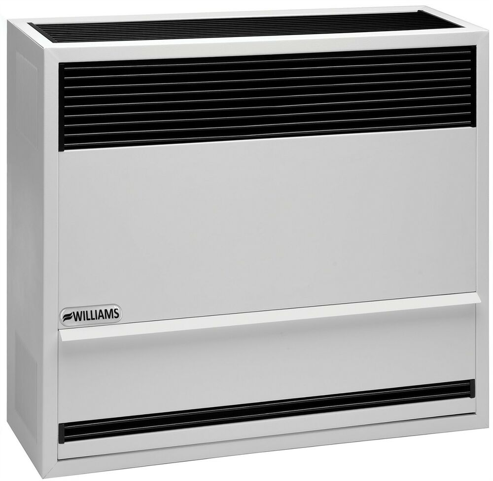 Williams 3003822 30000 BTU Direct Vent Wall Furnace Heater Natural Gas In Stock  eBay