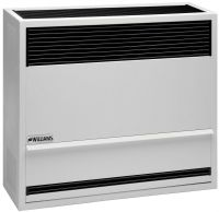 Williams 3003822 30,000 BTU Direct Vent Wall Furnace ...