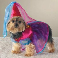 Casual Canine FAIRY PRINCESS Dog Pet Halloween Costume