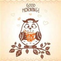 GOOD MORNING! Cute owl with tea cup kitchen food MAGNET | eBay