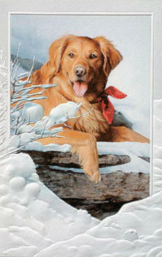 CHRISTMAS CARDS SNOW LOVER Pumpernickel Press MADE IN