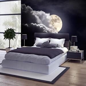 Fototapete Vlies Mond  Tapete Tapeten Fototapeten Fr Schlafzimmer FDB13  eBay