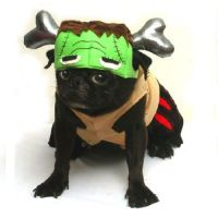 High Quality Dog Costume - BARKENSTEIN COSTUMES ...