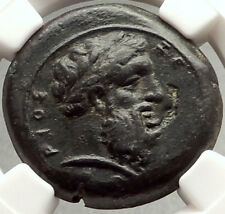 SYRACUSE in SICILY Authentic 343BC Ancient Greek Coin ZEUS & EAGLE NGC i67813