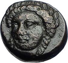 GRYNION or Gyrneion Aeolis 306BC Apollo Shell RARE Ancient Greek Coin i69980