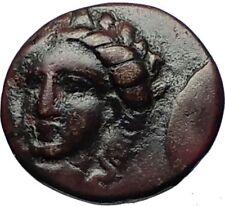 GRYNION or Gyrneion Aeolis 306BC Apollo Shell RARE Ancient Greek Coin i69484