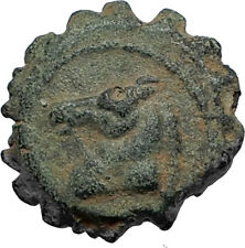 DEMETRIOS I Soter RARE R3 Ancient Seleukid Greek Coin HORSE ELEPHANT i67750