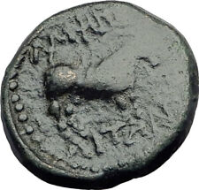 AMPHIPOLIS MACEDONIA 1CenBC RARE R1 Authentic Ancient Greek Coin DIONYSUS i63652