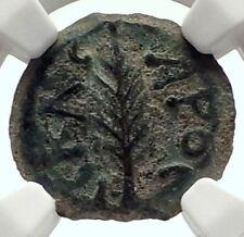 Biblical Jerusalem Saint Paul NERO PORCIUS FESTUS Ancient Roman Coin NGC i70940