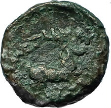 ALEXANDER III the GREAT Lifetime 336BC Ancient Greek Coin APOLLO & HORSE i66576