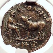 SEVERUS ALEXANDER ASCLEPIUS of VETERINARY Medicine Parion Roman Coin NGC i69335