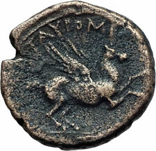 TAUROMENION in SICILY Rare R2 200BC Authentic Ancient Greek Coin PEGASUS i74836
